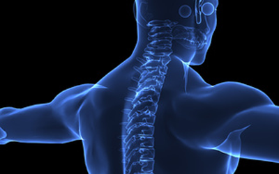 medical-x-ray-back